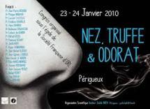 Nez truffe3